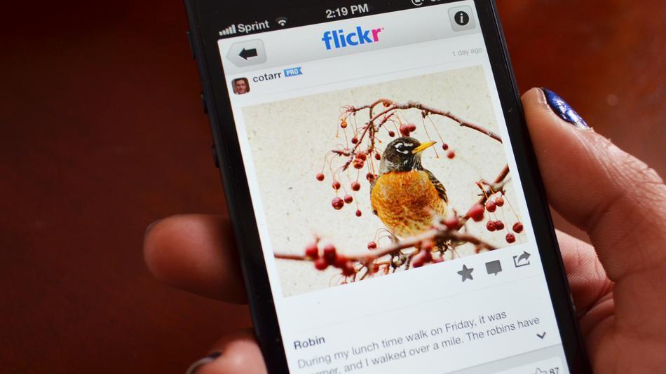 flickr1